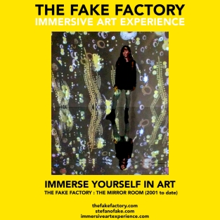 THE FAKE FACTORY - THE MIRROR ROOM IMMERSIVE ART_00307